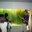 葛西臨海水族園(9月9日)