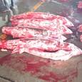 気仙沼の魚市場