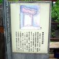 横浜のお台場1