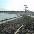 大田区ふるさとの浜辺(2007年2月)