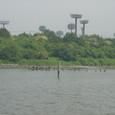 大井中央海浜公園