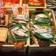 神奈川県三崎港(2007年11月)